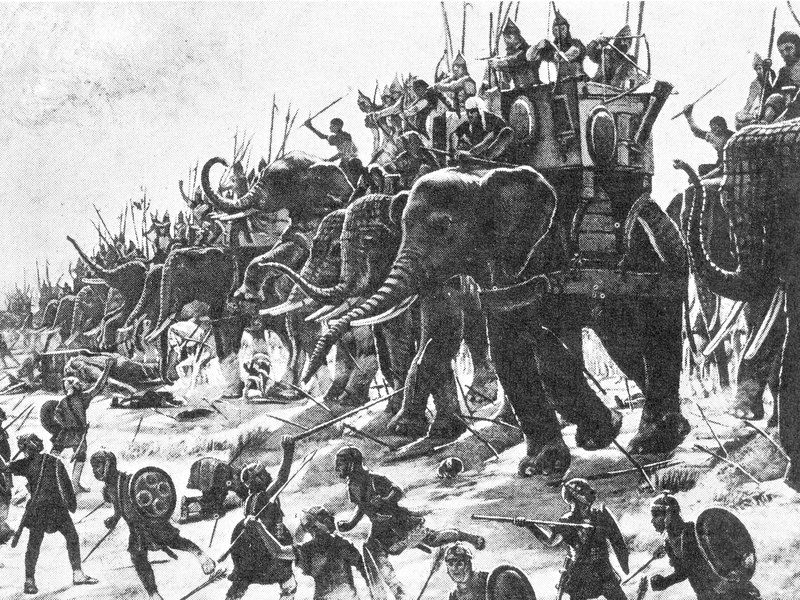0000war-elephants.jpg__800x600_q85_crop