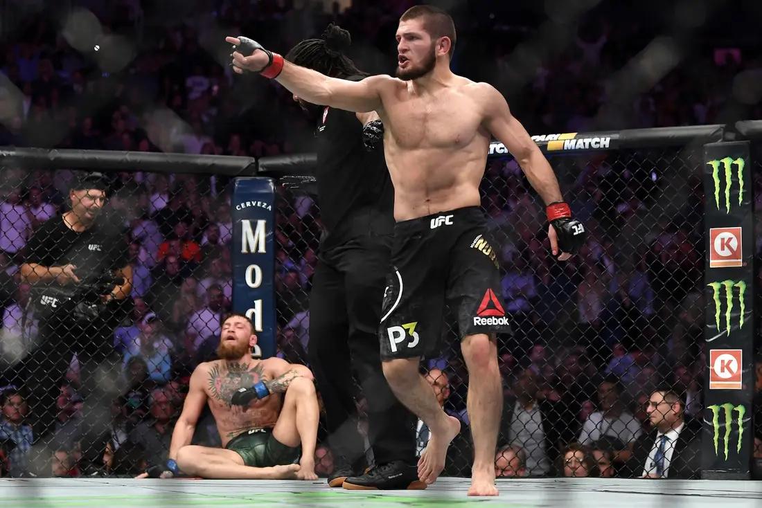 Khabib Nurmagomedov lao vào góc khán đài củaMcGregor sau trận đấu tại UFC229.